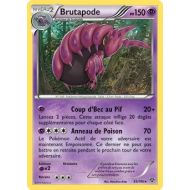 Brutapode 150 PV - 53/146 XY