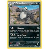 Pandarbare 120 PV - 68/111 XY POINGS FURIEUX