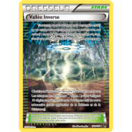 Vallée Inverse Carte Half Art Peu Commune - 110/122 - XY9