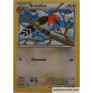 Braisillon Carte Peu Commune 70 Pv - 95/114 - XY11